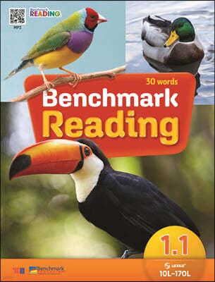Benchmark Reading 1.1