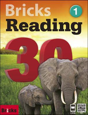 Bricks Reading 30 1