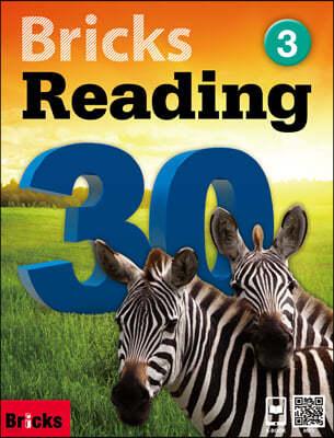 Bricks Reading 30 3