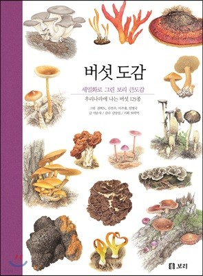 버섯 도감