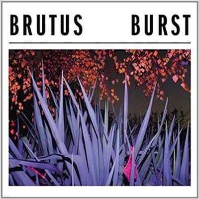 Brutus - Burst (CD)