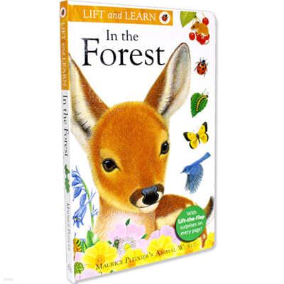 [스크래치 특가]Lift and Learn: In the Forest