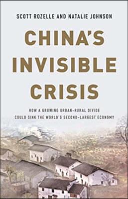 China's Invisible Crisis