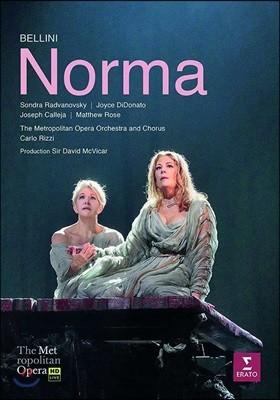 Carlo Rizzi 벨리니: 오페라 '노르마' (Bellini: Norma) [2DVD]