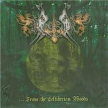 Berserk / From the Celtiberian Woods (수입/미개봉)