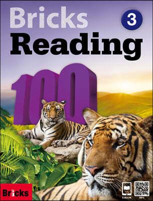 Bricks Reading 100 3