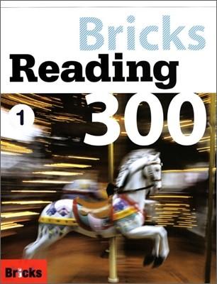 Bricks Reading 300 L1