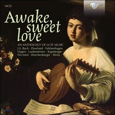 Awake Sweet Love : 류트 뮤직