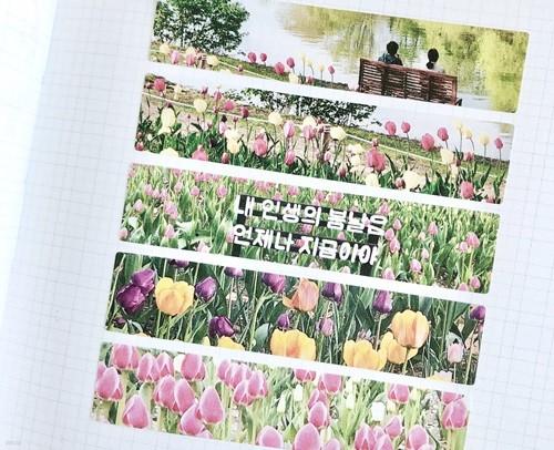 Moment square sticker 사각 스티커 02.tulip