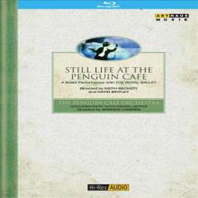 펭귄 카페의 정물 (Still Life At The Penguine Cafe) (Hi-Res Audio)(Blu-ray) (2016) - Penguin Cafe Orchestra