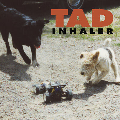 Tad (태드) - 3집 Inhaler [블랙 & 레드 소용돌이 머트 믹스 컬러 LP]